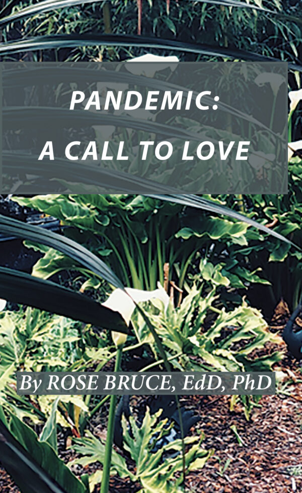 front Cover Pandemic A Call to Love
